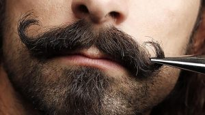 grooming-the-stache