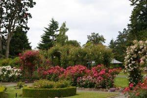 Garden-at-Government-House-Victoria-BC