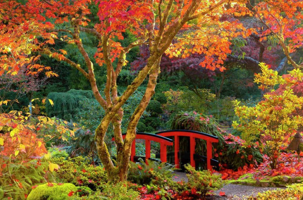 Butchart Gardens Should I Go When Is The Best Time Of