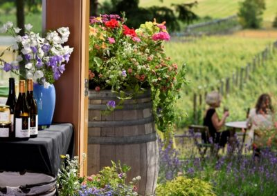 Symphony Vineyard family estate in Victoria, bc